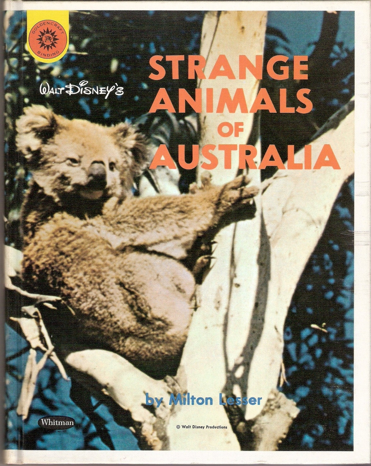 the strange animals of australia Koalas are notoriously strange little animals they're hyper-specialists, tied to the fragrant eucalyptus groves of australia, where they somehow make a.