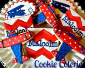 Airplane Themed Decorated Cookies Planes Cookie Favors One Dozen