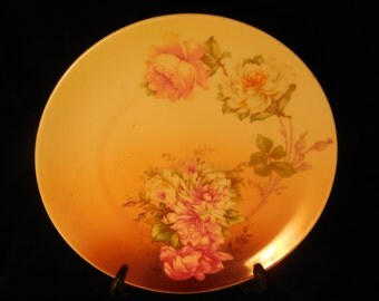 M & Z China Roses Display Plate