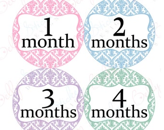 Girl Monthly Baby Stickers, 1 to 12 Months, Monthly Bodysuit Stickers, Baby Age Stickers, Damask Framed Light  (019-2.2)