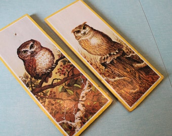 one PAIR of Vintage 1970's Beautiful OWL wall plaques Soroka Sales Inc Litho in USA
