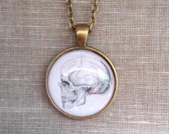 Vintage Anatomical Skull Pendant Necklace Jewellery