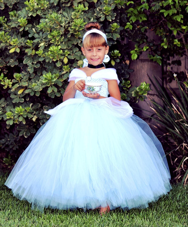 Cinderella Inspired Tutu Dress. For Princess Birthdays Themed