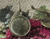 Sepia Tree, Tree Earrings/Jewelry, Image Jewelry, Earrings Gift, Gift, Earring Gift