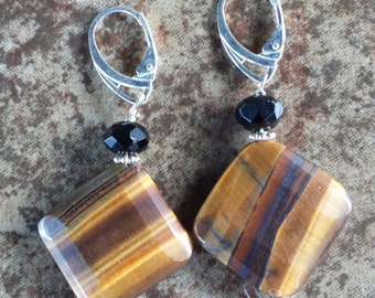 Tiger Eye Black Onyx Earrings