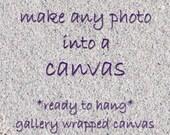 Canvas art, horse on canvas, canvas home decor, large canvas, canvas print, choice of sizes