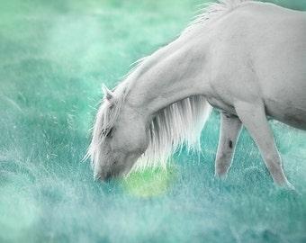 Teal wall art, fantasy horse photo, decor for girls room, magical, fairytale pony, green, mint, aqua,