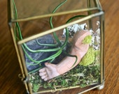 OOAK air plant terrarium with Fools Gold rock in the raw