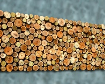 24x60 Tree Branch Wall Art Wooden Wall Sculpture Rustic Primitive Vacation Contempoary Home Decor Random Textured 9 Specie CUSTOM MADE
