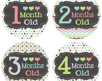 Baby Month Stickers Newborn Monthly Stickers Baby's First Year Milestones Girl Baby Shower Gift Newborn Photo Prop Baby Accessories BMST007