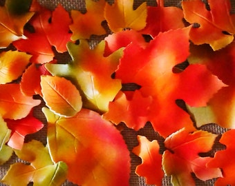 12 Assorted Edible Fall Leaves