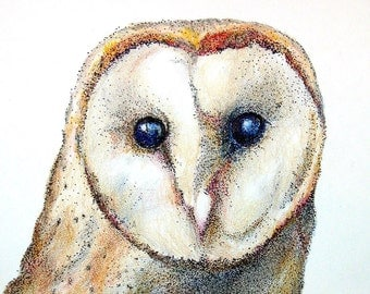 Original Barn Owl Pen and Ink and Colored Pencil Pointillism Drawing