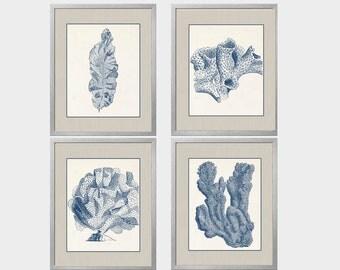 Navy Blue Coral, Set of Four 8x10, Blue Tan Cream, Coral Art, Coral Wall Art, Navy Blue Coral Prints, Sealife print Blue 8x10 Prints