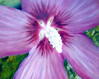 Giclee Archival Print - Rose of Sharon - Close Up by David Lawter