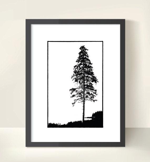 Black & White Fine Art Photo Print. White Pine Silhouette. Evergreen Tree. Woodland Scene. Monochrome Nature Photography.