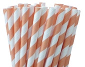 Peach Party Straws, Peach Paper Stripe Straws 25, Peach Wedding Decor, Rustic Wedding, Party Straws, Paper Straw, Wedding Bar Straws,