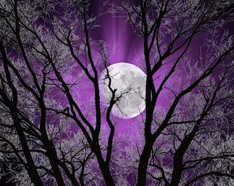 Purple Sky Moon Tree Decor Purple Home Decor Pictures Purple Bedroom Wall Art Matted