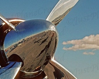 Hawker SeaFury 8x12 Fine Art Print, Prop and Spinner, Reno Air Race