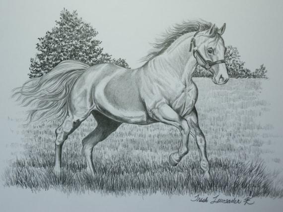 original pencil drawing of a horse running by LuckyDuckyArt