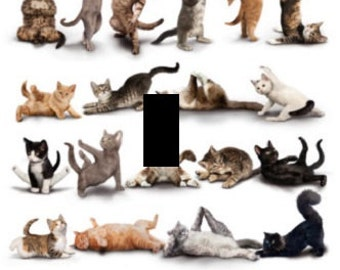 popular items for animals doing yoga on etsy. Black Bedroom Furniture Sets. Home Design Ideas