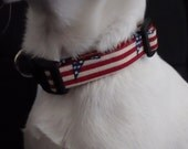 Stars and Stripes KOUTURE Adjustable Dog Collar-Ready To Ship