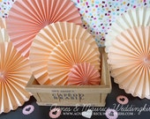 A set of 9 pieces The Peach Blossom Paper Fans/Rosettes -- Wedding&Party Deco/Props/Pinwheels /Nursery Decor / Wall decor