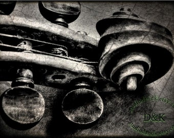 Violin Black Grey Wall Art - Black and White Photography Large Wall Art in 16x20 20x30 and More