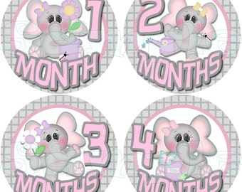 BABY Girl Monthly Stickers Elephant Baby Stickers Baby Shower gift 1- 12 Months stickers infant monthly stickers milestone stickers decals