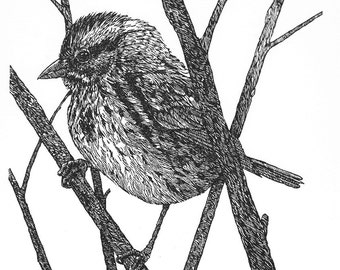 Song Sparrow linocut