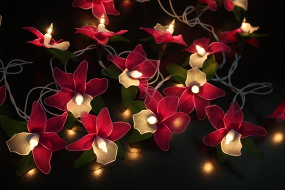 Fairy String Lights 20 Purple Tone Orchid By Fairylighting