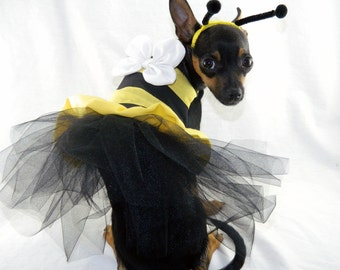 Bumble bee dog costume with headband XXS-M