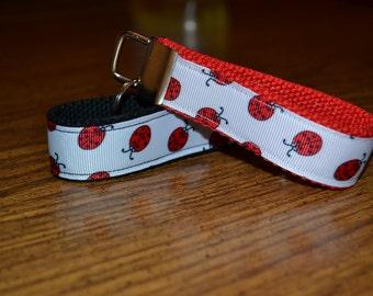 SALE! Ladybugs Keychain