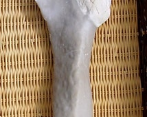 One of a Kind Paleo Indian Stone Woodworking Tool