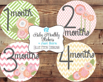 Monthly Baby Stickers,Monthly Bodysuit Stickers,Monthly Baby Girl Stickers-Floral,Pink,Baby Age Stickers,Growth Stickers,Baby Stickers G0803