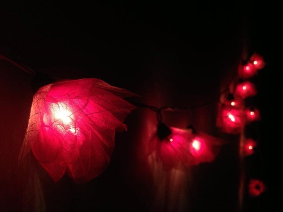 fairy string lights 20 pieces for home by icandylighting