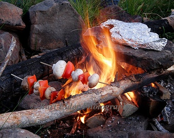 Photograph of a campfire with food cooking - 29851