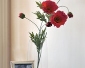 Flowers -Simply poppies paired with a square frame - NothingBudBlooms