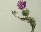 Thistle Dragon Watercolor Art Print, limited edition