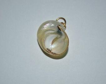 Vintage gold edged Pearl Umbonium Sea Shells.