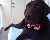 Valentine's Day Collar Cover with Bow Tie for Dogs - BohemianRiver