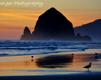 Oregon Coast Sunset Photo