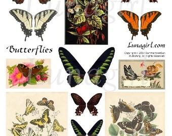 BUTTERFLIES digital collage sheet vintage images garden nature woodland butterfly wings ORANGE Brown altered art ephemera DOWNLOAD printable