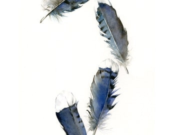 feather painting - watercolor feathers, feather art -Blue Jay Feathers - Archival print, minimalist, blue, bird feathers, natural home decor