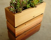 Succulent Planter Box in Recycled Cedar, With Gravel and Soil