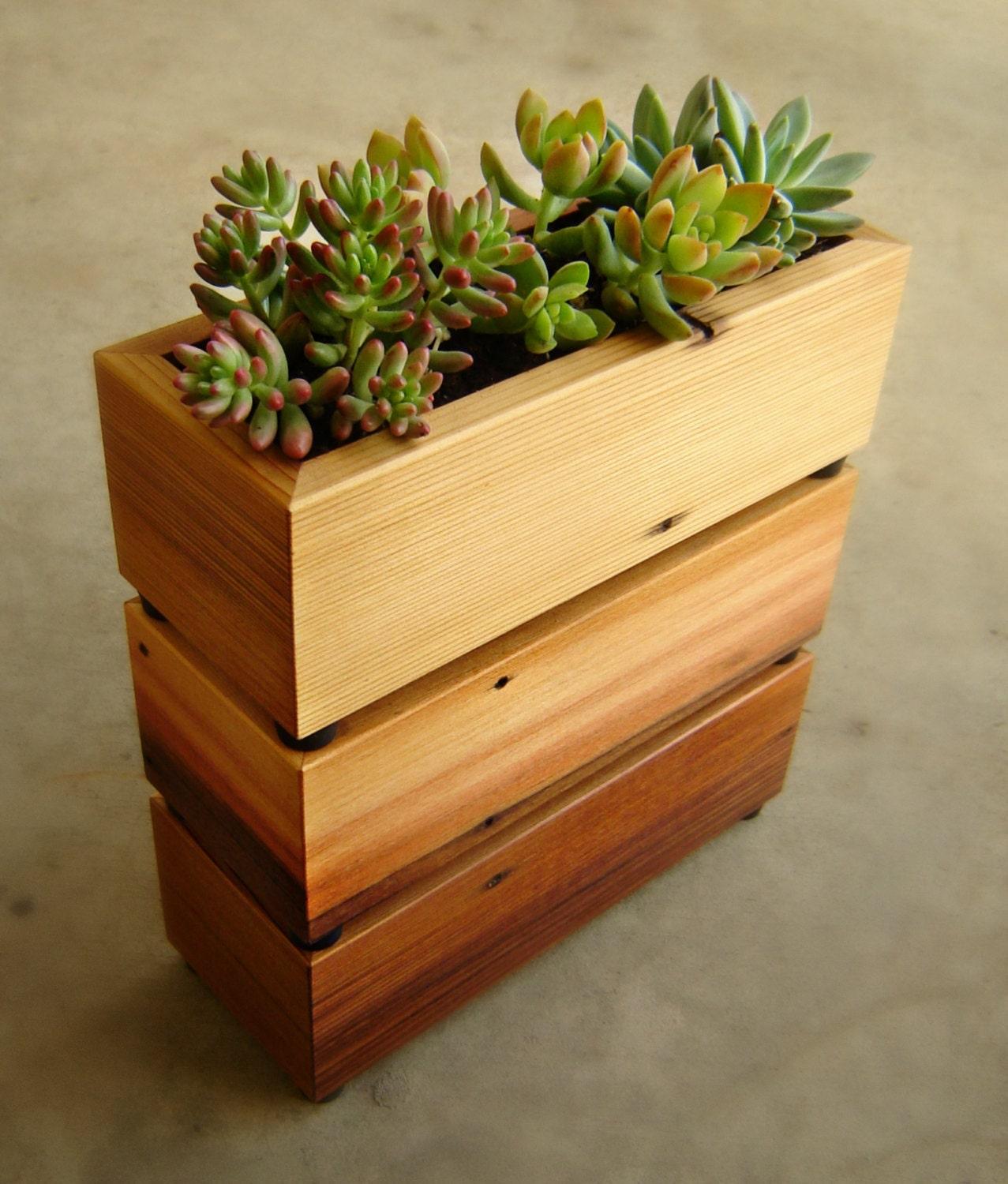 succulent planter box in recycled cedar with gravel and soil. Black Bedroom Furniture Sets. Home Design Ideas