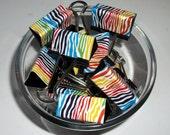 "Binder Clips - ""Funky Zebra"" 12 medium binder clips"