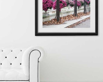 "Paris Print, ""Mums"" Extra Large Wall Art, Paris Photography Art Print, Oversized Art, Fine Art Photography Paris Decor"