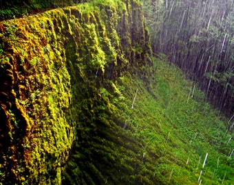 Waterfall Mossy Canyon Green Forest Fine Art Photography Misty Eagle Creek Trail Oregon Greeting Card MYSTERIES OF EARTH by Spinning Castle