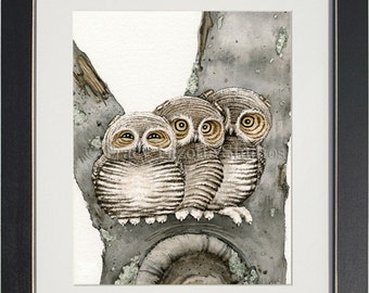 Three Small Owls - archival watercolor print by Tracy Lizotte