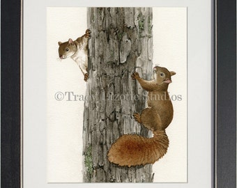 Squirrel Tag - archival watercolor print by Tracy Lizotte